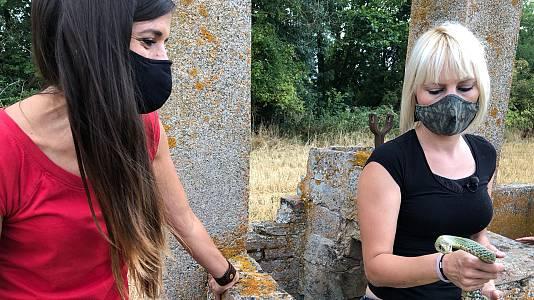 Evelyn Segura y las serpientes de Llagostera