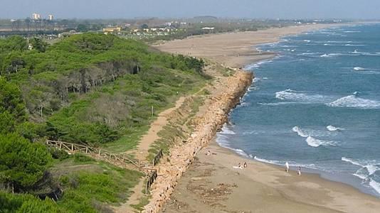 El golfo de Rosas. La fijación de las dunas