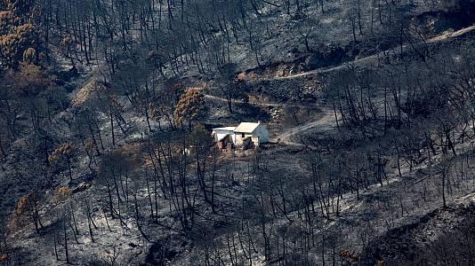 El incendio en Sierra Bermeja podría ser intencionado