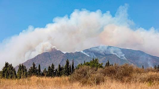 El incendio de Sierra Bermeja es agresivo y con su propia dinámica de propagación