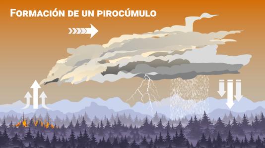 Pirocúmulo: el fenómeno que dificulta el incendio de Málaga