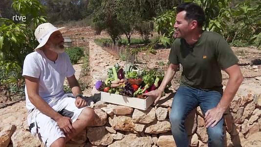 Gastronomía en Ibiza: recorremos los productos de la isla