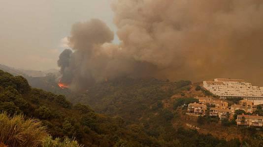 La Junta de Andalucía pedirá declarar Sierra Bermeja zona catastrófica