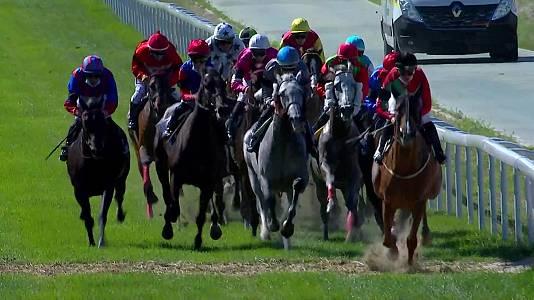 Circuito nacional carreras de caballos (Hipód. La Zarzuela)