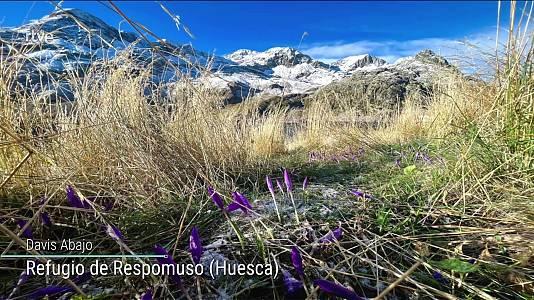 Chubascos localmente fuertes, muy fuertes en Baleares y en el este de Cataluña. Precipitaciones localmente persistentes en el Pirineo oriental. Intervalos de viento fuerte en el litoral Cantábrico occidental, Ampurdán, bajo Ebro, Baleares y Canarias