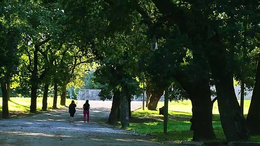 Santiago de Compostela, verde que te quiero verde