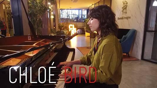 Acústico Chloé Bird