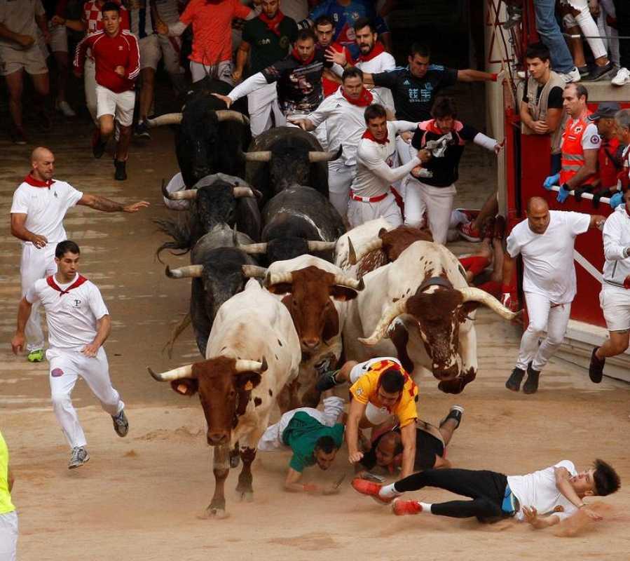 Los toros de la ganadería sevillana de Miura, a su entrada en la plaza de Toros de Pamplona.
