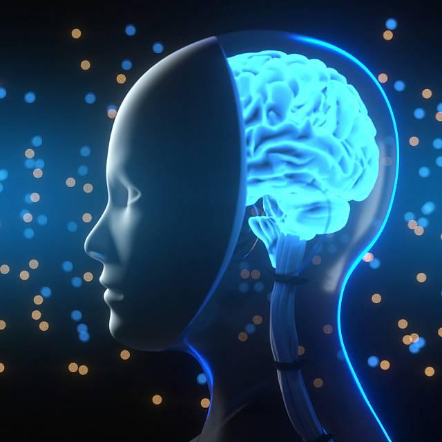 El procesamiento de la información en el cerebro