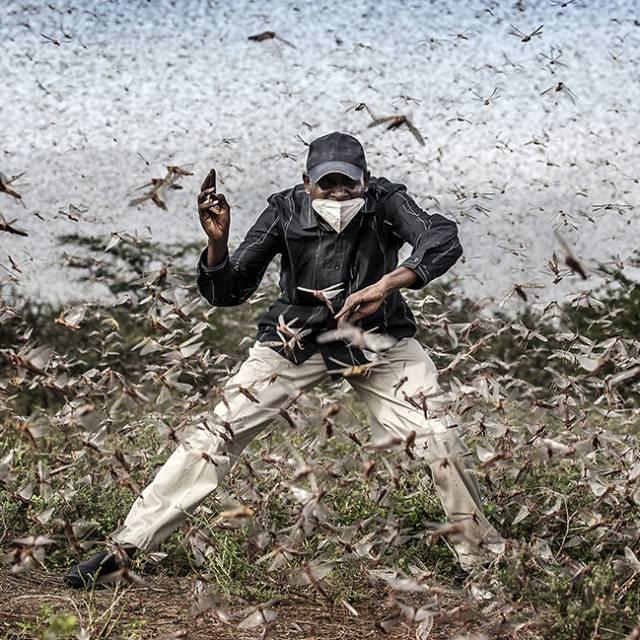 El fotoperiodista Luis Tato premiado en el World Press Photo