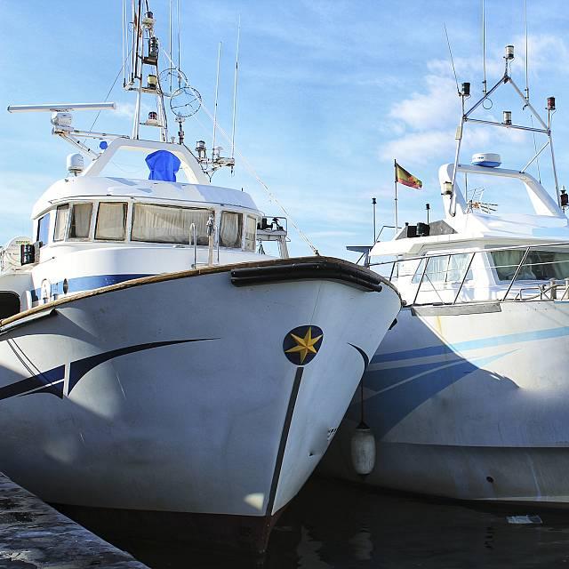 La crisis de la flota pesquera del mediterráneo