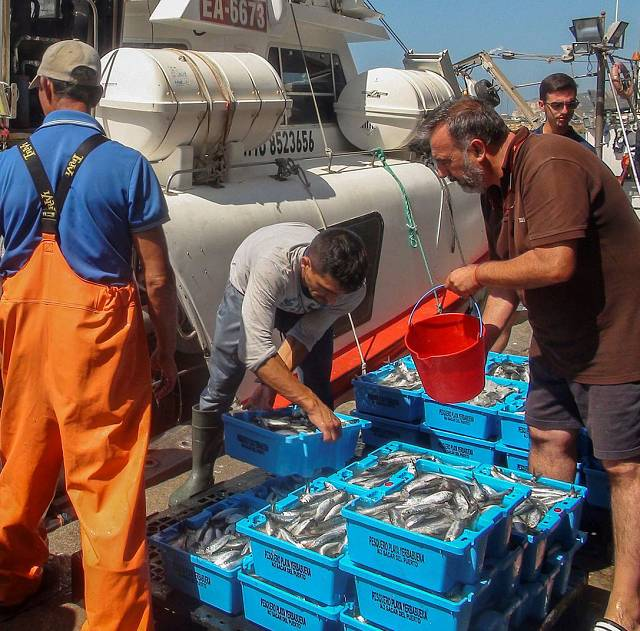 ¿Peligra el acuerdo de pesca UE-Marruecos?