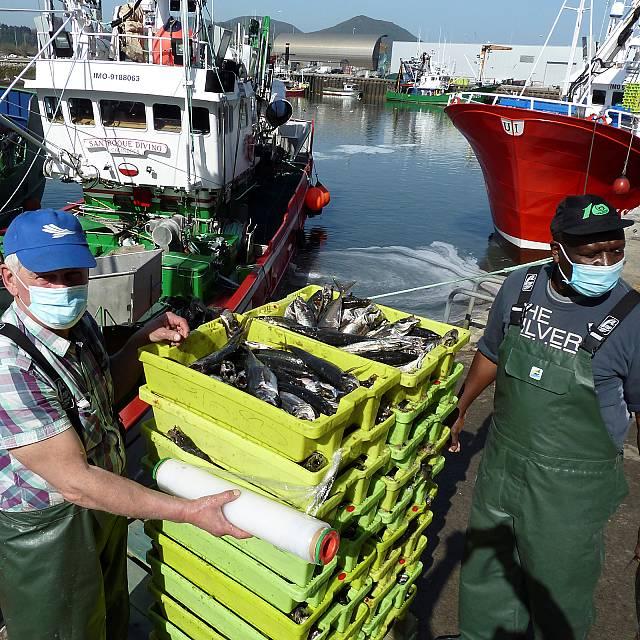 El Control de la pesca en la UE