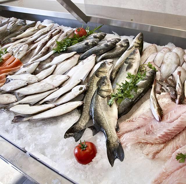 ¿Olvida los productos del mar la estrategia alimentaria?