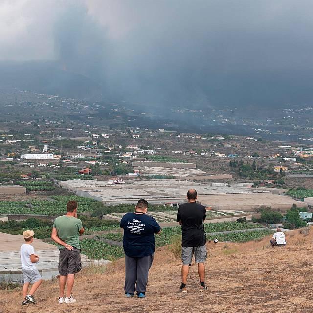 """COAG La Palma: """"Esta catástrofe no la cubren los seguros"""""""