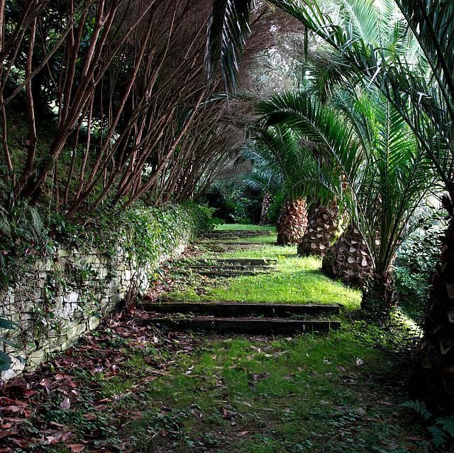 Recorremos el Bosque-Jardín de la Fonte Baxa