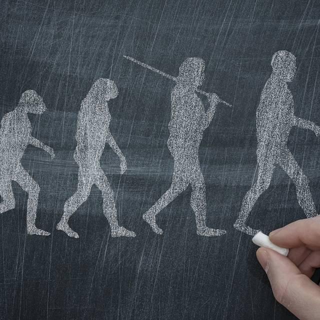 Genética, evolución y biología del desarrollo