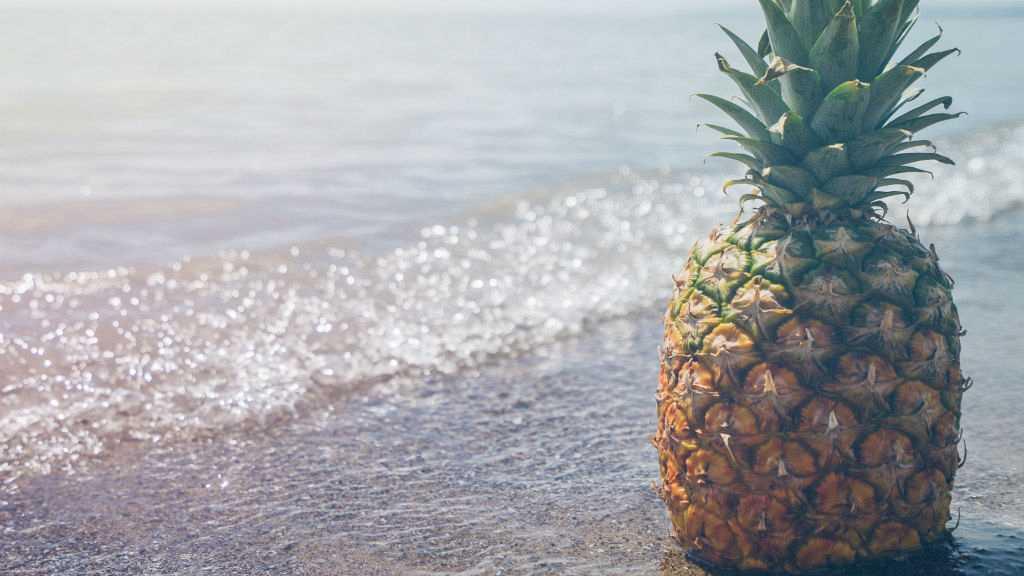 ¿Qué frutas y verduras comer en verano?
