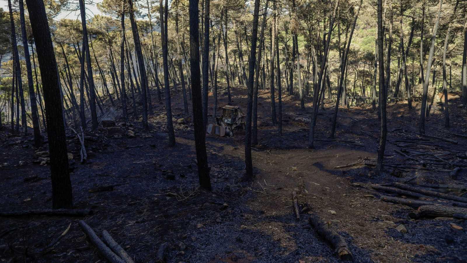 Una excavadora quemada en un incendio en Estepona