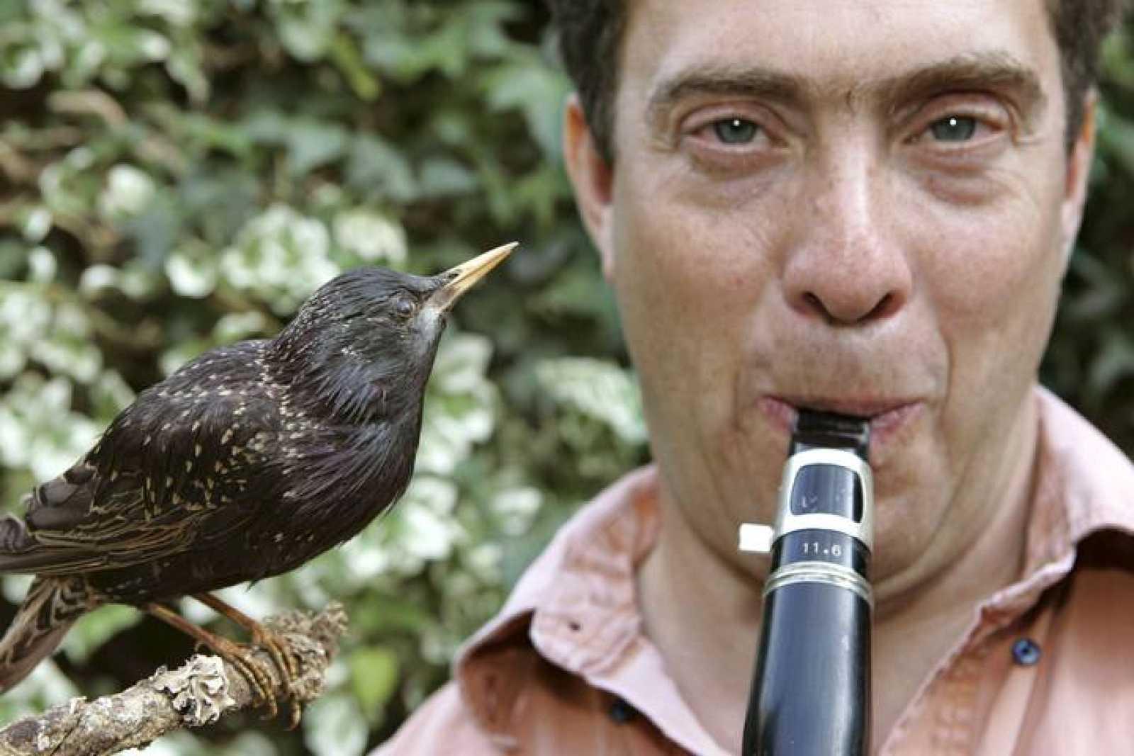 El ornitólogo y músico David Rothenberg con un pájaro