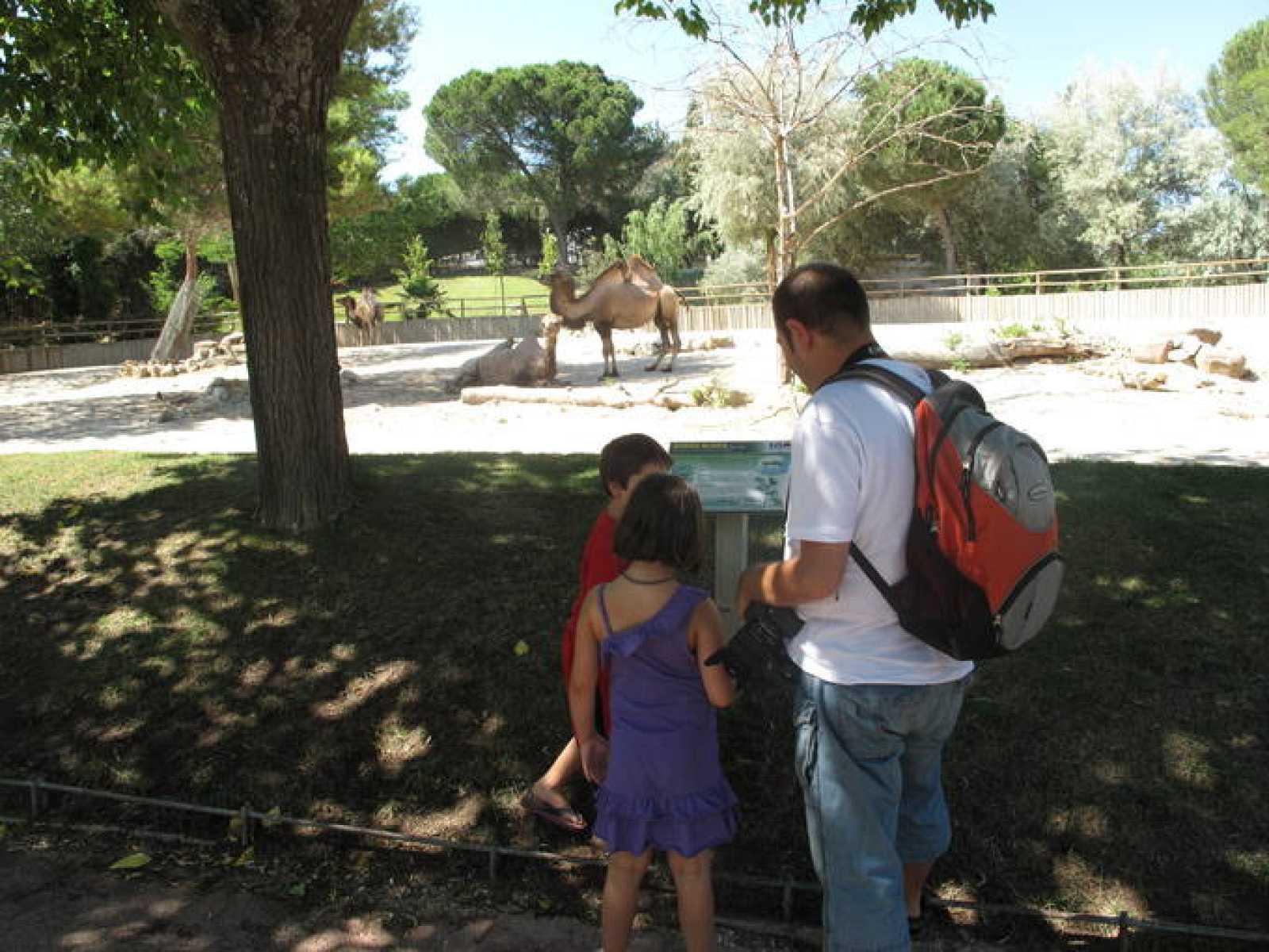 Carlos tiene la custodia compartida de sus hijos de 7 y 5 años.