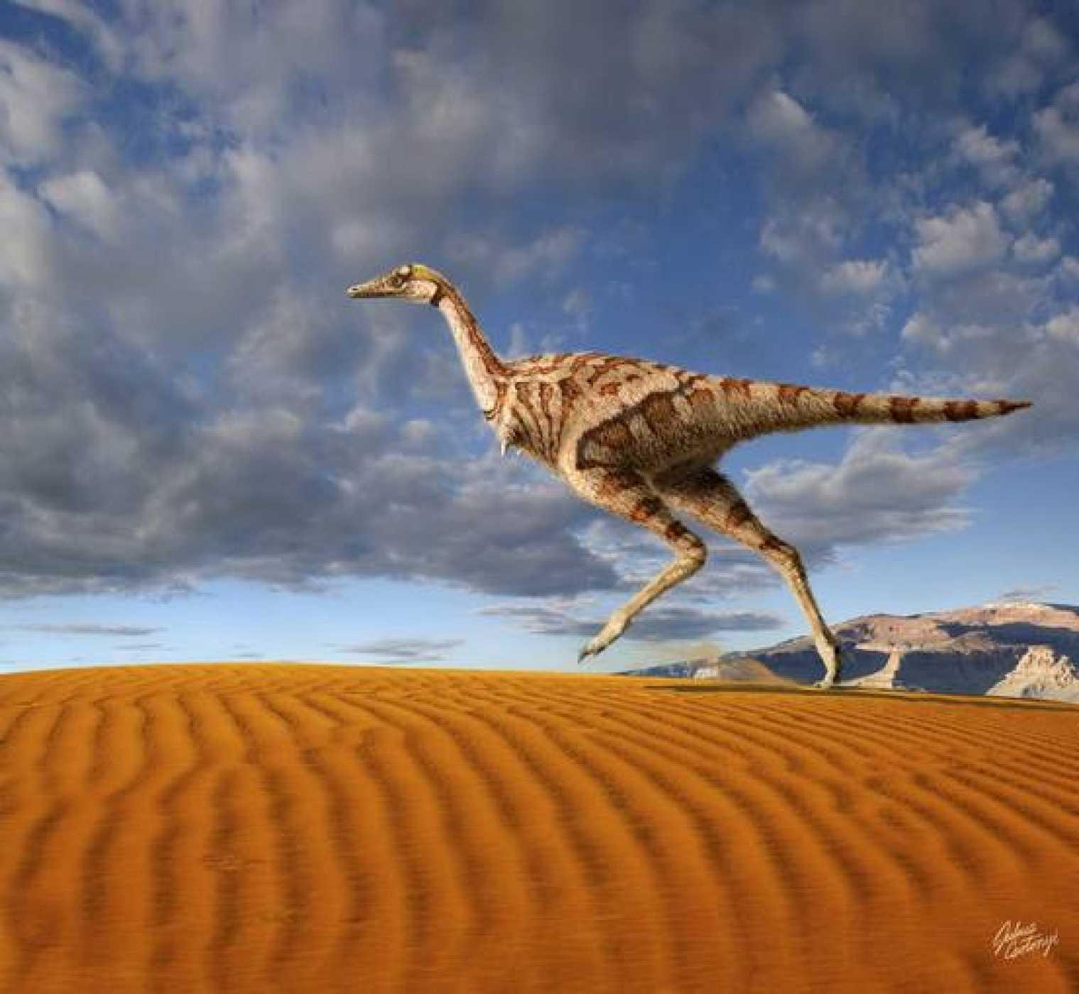 Hallan en China el primer dinosaurio del mundo con un solo dedo