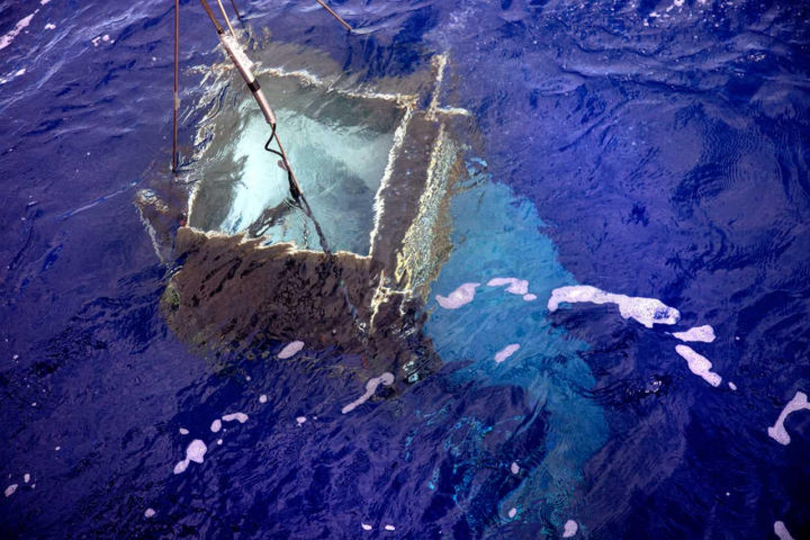 La luz penetra hasta niveles nunca antes detectados en las aguas del Pacífico Sur