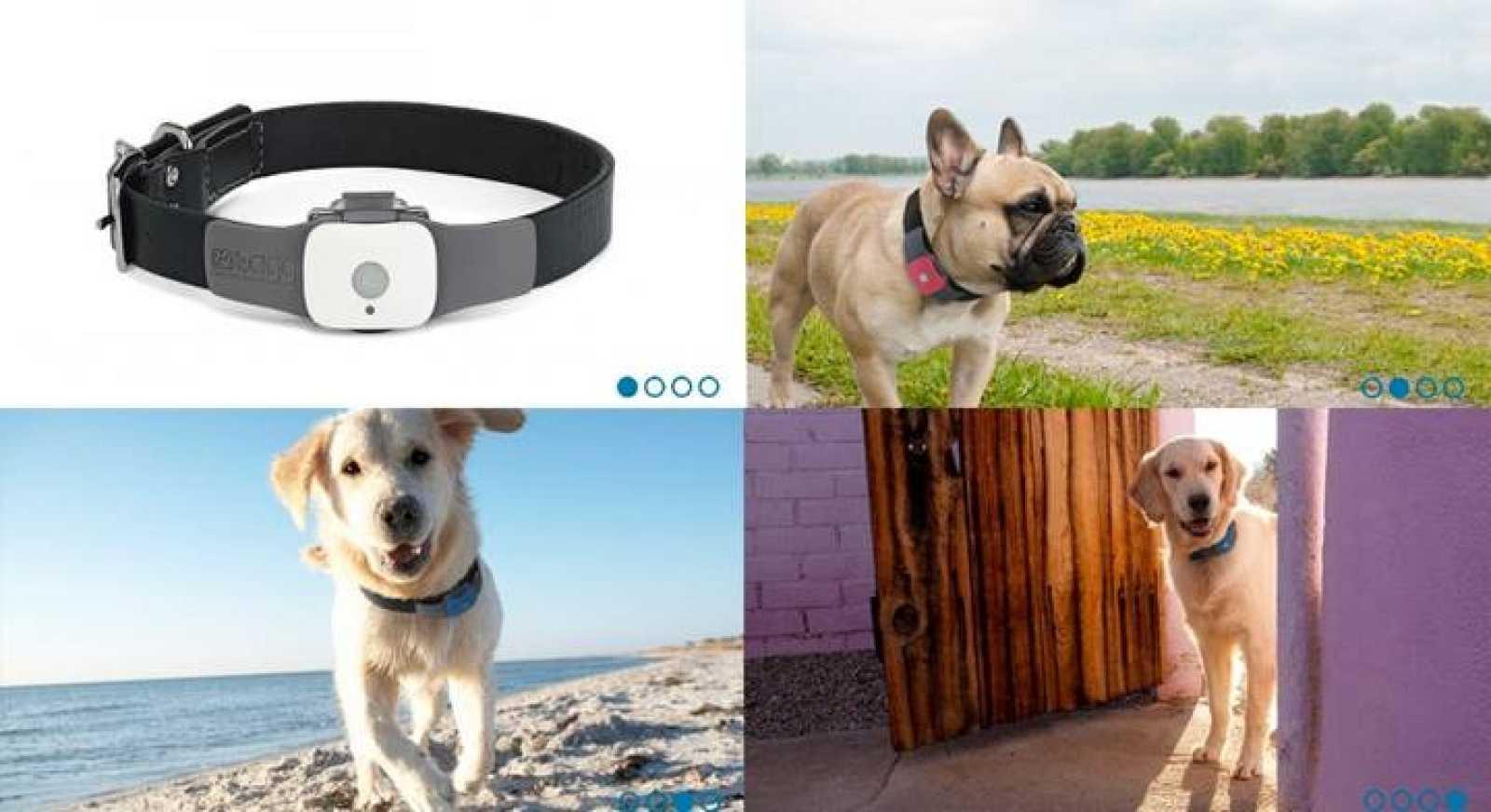 El 'localizador de mascotas'  incluye un receptor de GPS y un emisor de señales inalámbricas