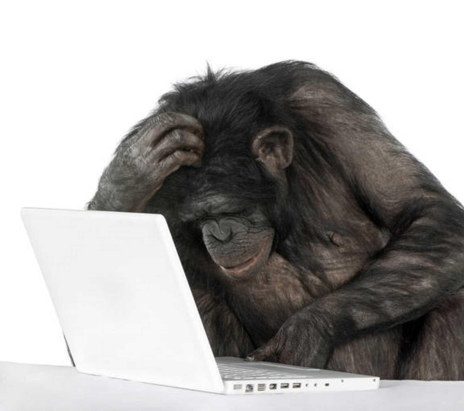 Un experimento con monos virtuales consigue reescribir las obras completas de Shakespeare