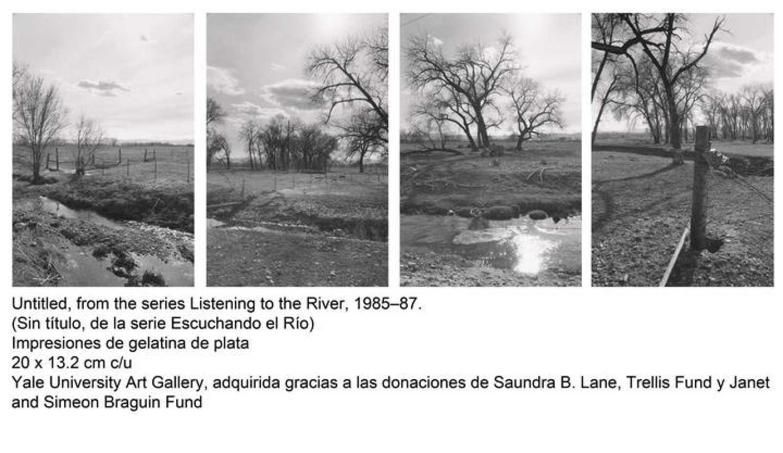 Detalle de una composición de varias fotografias, que pertenece a la serie 'Escuchando el río' (1985-1987)