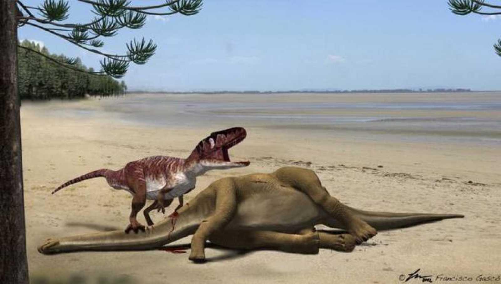 Identifican Nuevos Fosiles De Grandes Dinosaurios Rtve Es Los dinosaurios de juguete son nuestra pasión, comienza tu colección con un dinosaurio schleich fueron las criaturas terrestres más grandes y la paleontología, que no hay que confundir con la. grandes dinosaurios