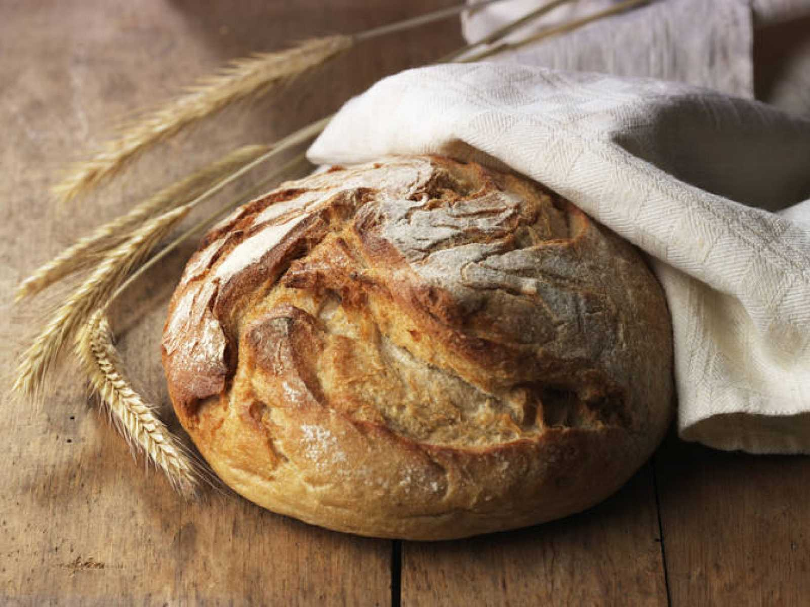 Pan de trigo recién horneado.