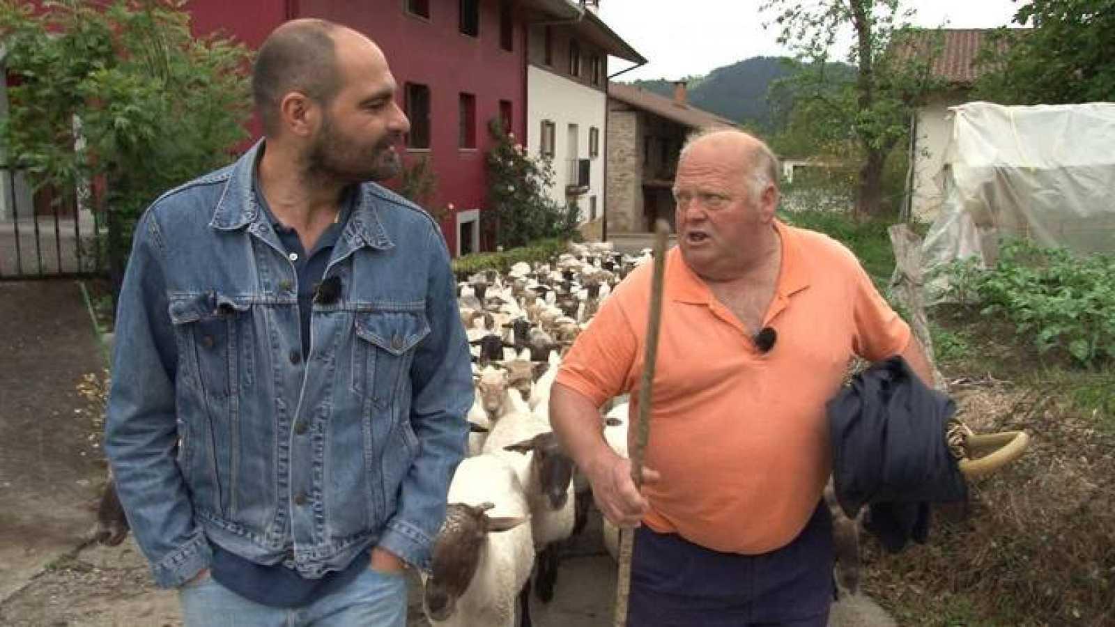 El queso Idiazábal se elabora con leche cruda de ¿oveja latxa¿ que sólo se elabora en el País Vasco y parte de Navarra.