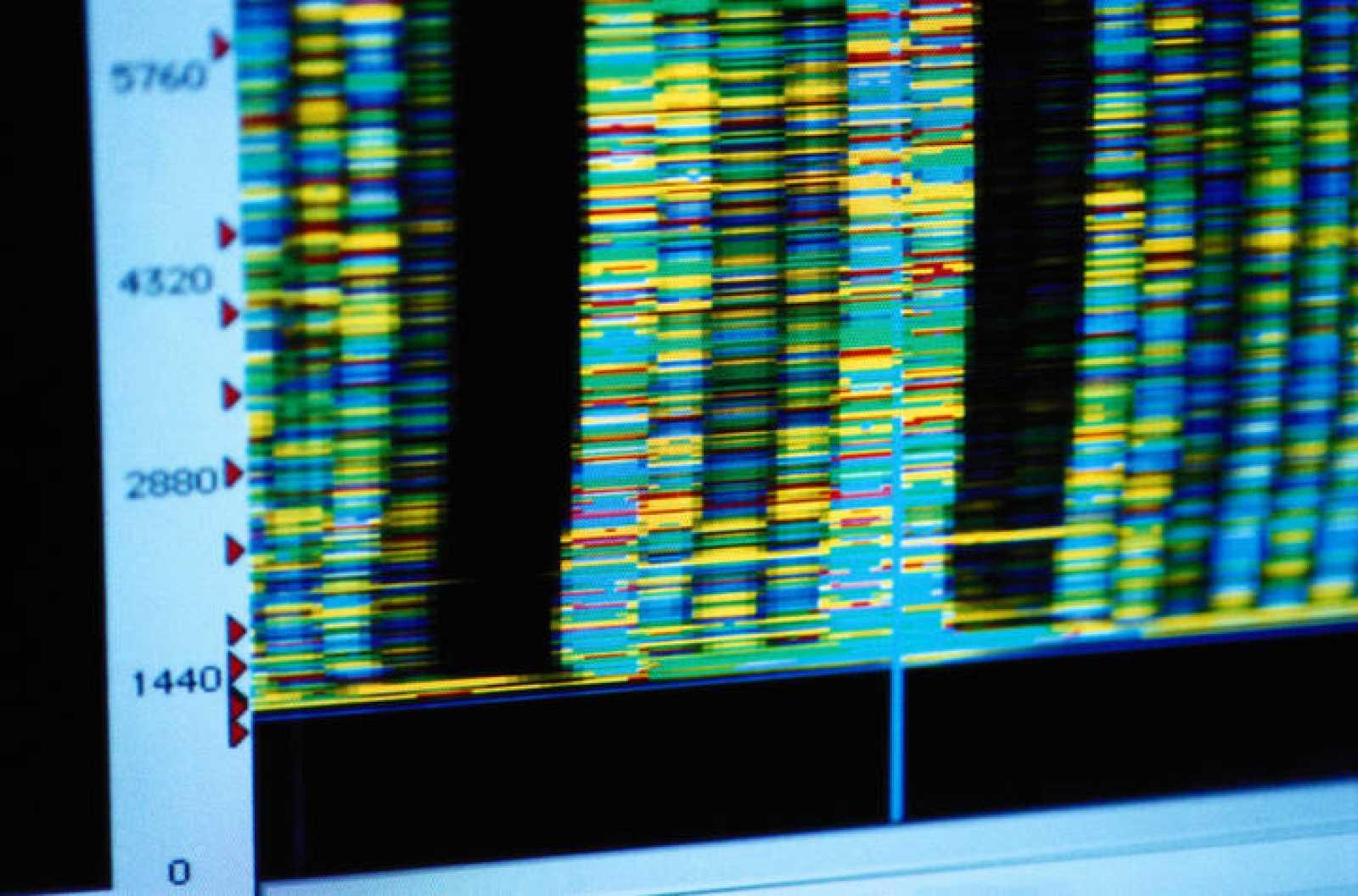 Pantalla mostrando diferentes configuraciones de ADN.