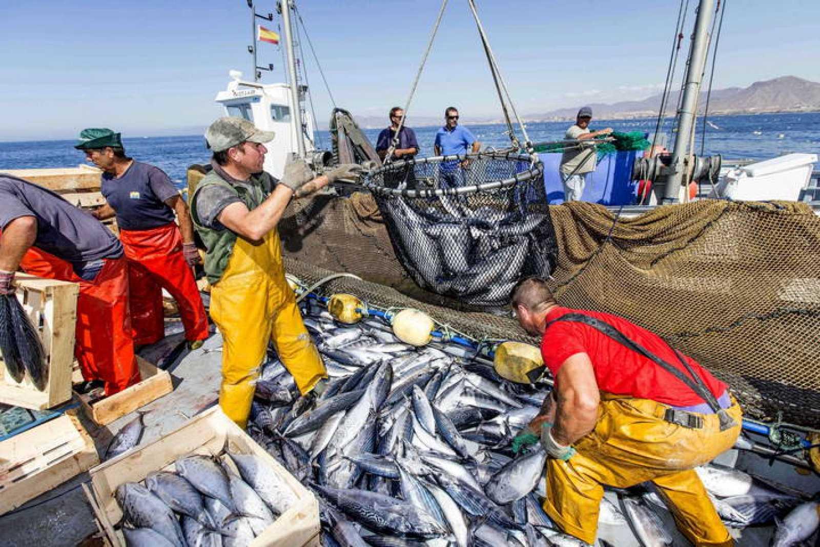 El estándar de pesca responsable de la flota atunera española se convierte en referente internacional para los ODS de la ONU