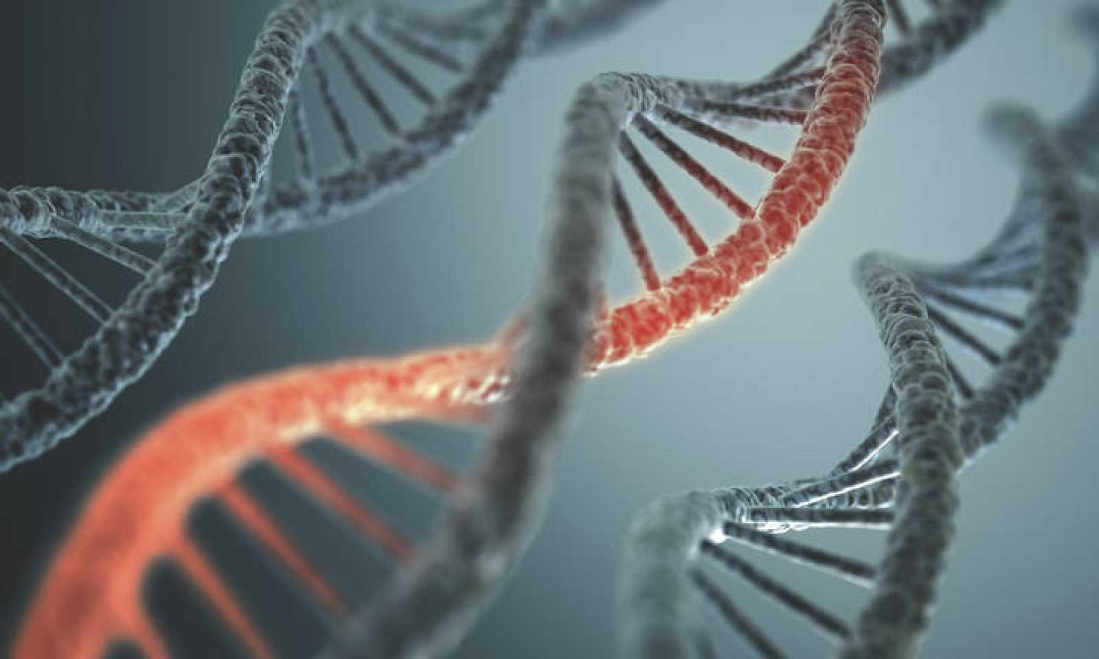 Estructura de ADN.