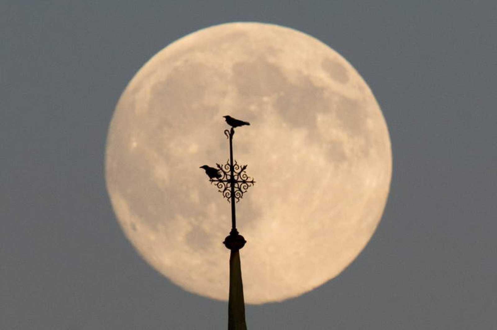 La luna llena vista sobre el cielo de Berlín, Alemania.