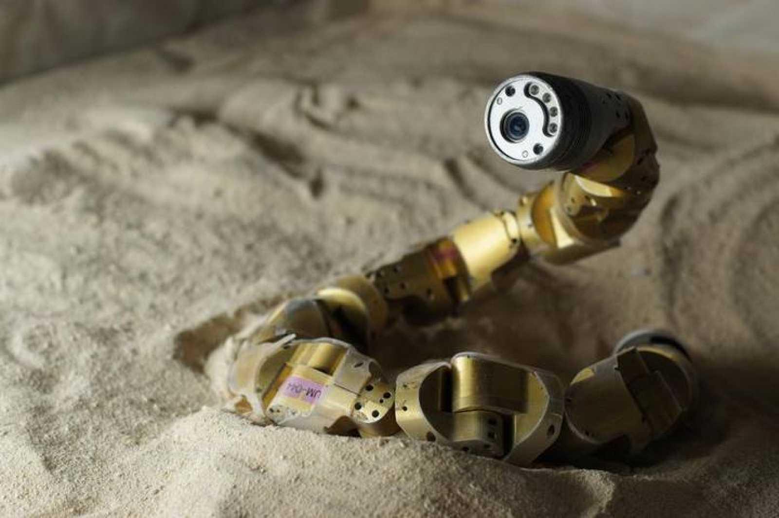 El robot capaz de moverse como una serpiente de cascabel.