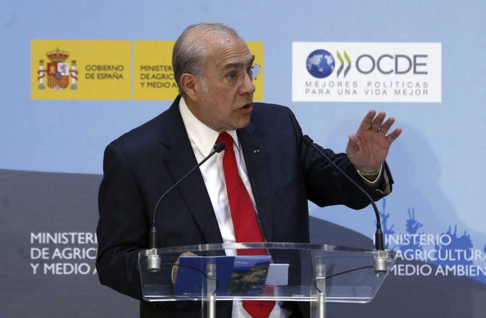 El secretario general de la Organización para la Cooperación y el Desarrollo Económicos (OCDE), Ángel Gurría