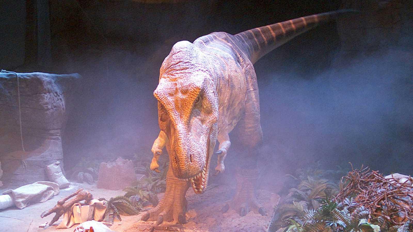 España Tierra De Dinosaurios Rtve Es
