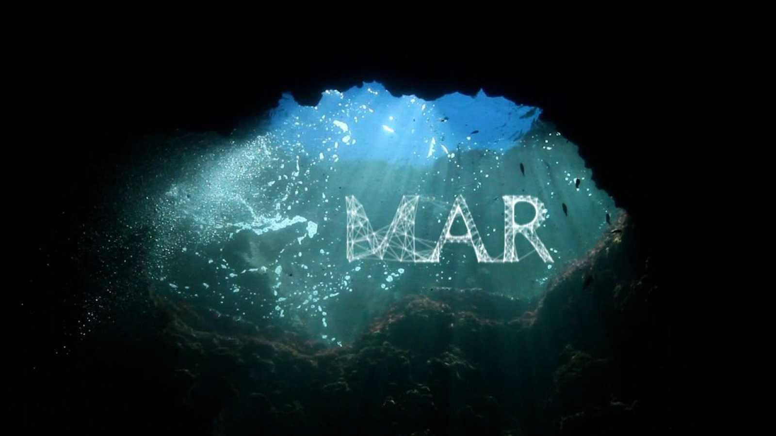 El Mar, el primer capítol de la sèrie animalades