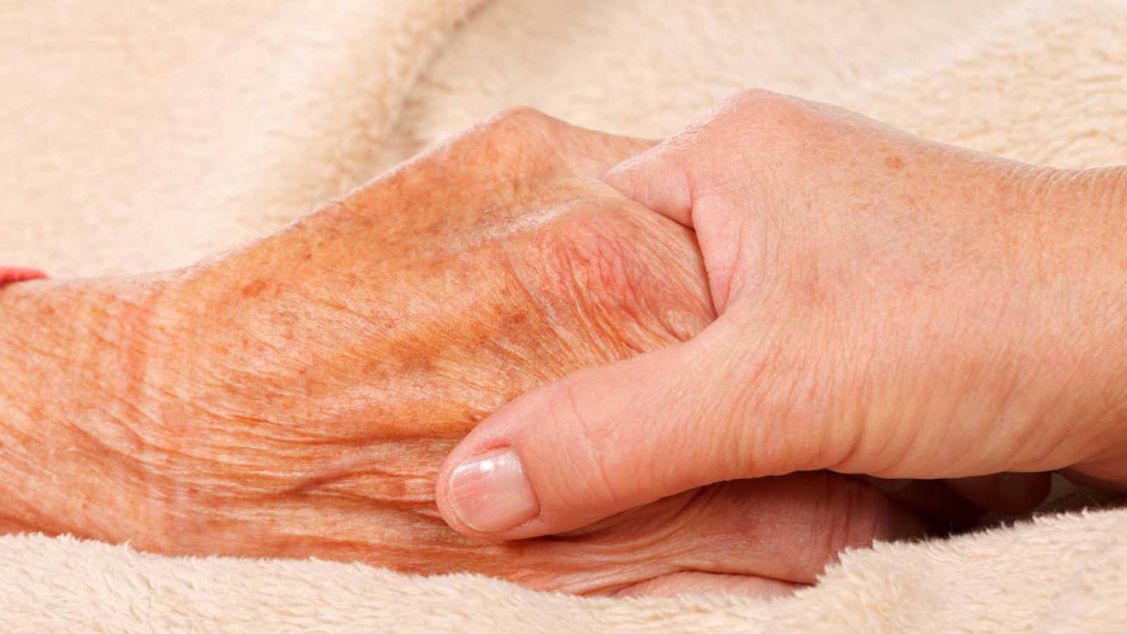 El perfil lipídico cerebral de personas con alzhéimer o párkinson es muy distinto al de personas sanas.