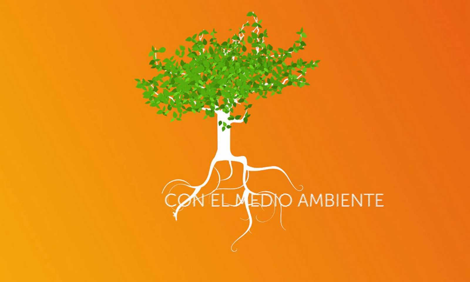 Concienciados con el medio ambiente en RTVE