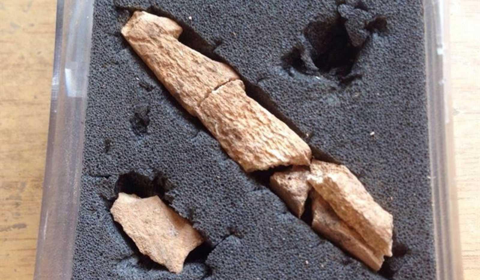 Los restos arqueológicos corresponden al Paleolítico superior.