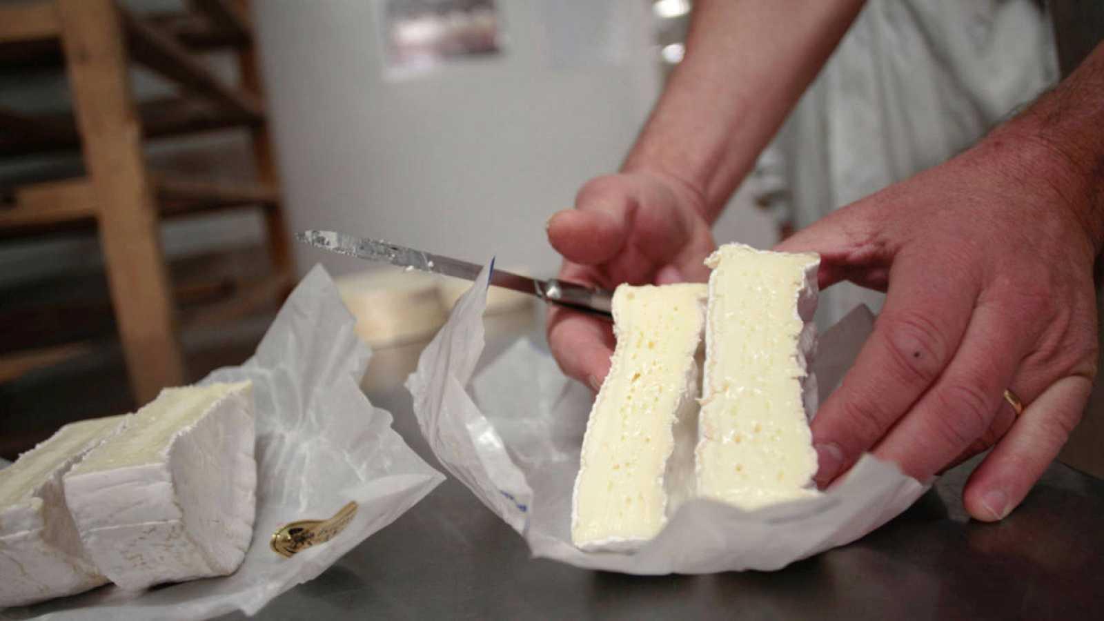 Corte de un queso francés camemberg