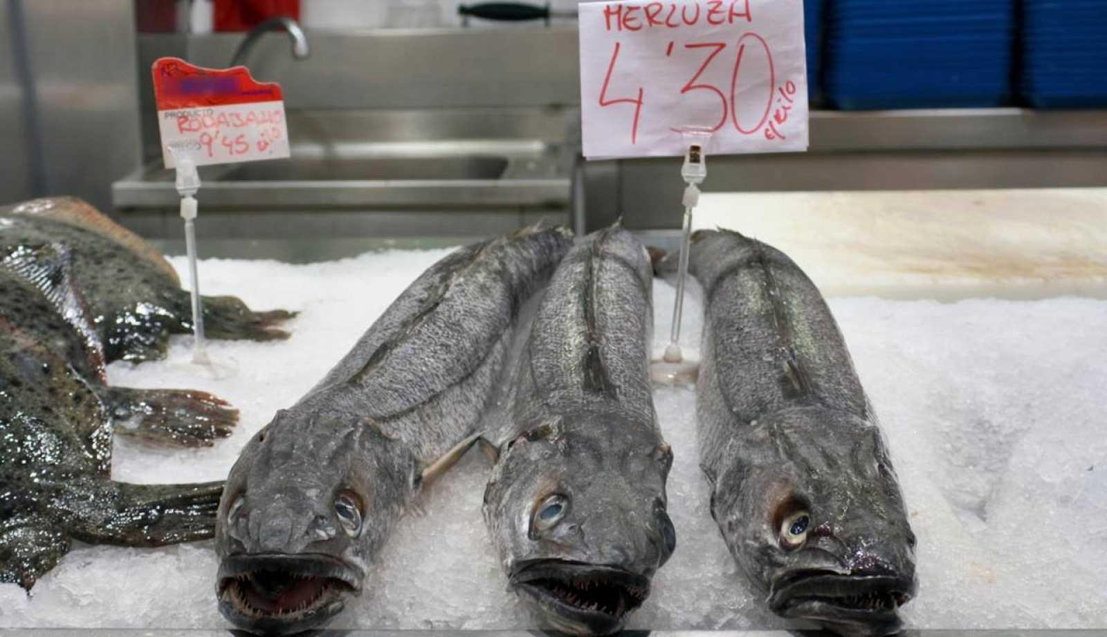 Los trabajos científicos se han centrado en peces de fondo de alto interés comercial, como las merluzas.