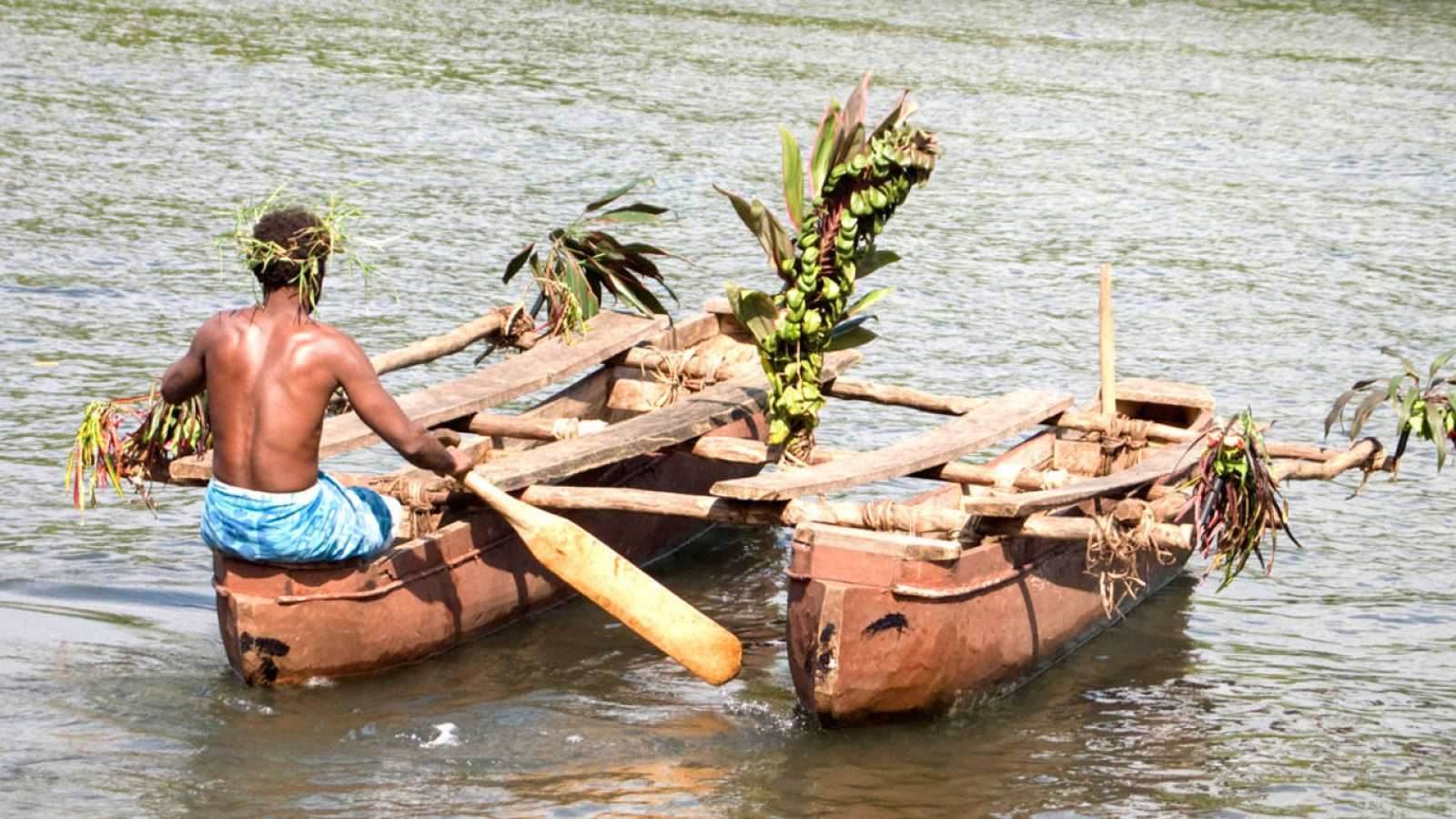 La arqueología consideraba que los lapita, pueblo de exploradores marinos, procedía de Nueva Guinea o de alguna otra región de Australasia.