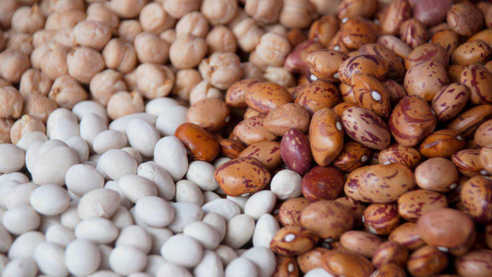 Las legumbres analizadas por el trabajo científico fueron lentejas, garbanzos, alubias y guisantes.