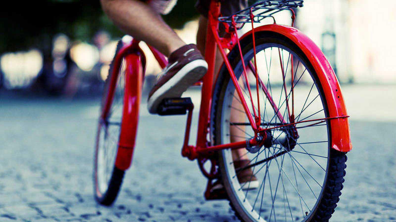 'Memoria de delfín' celebra el Día Mundial de la Bicicleta
