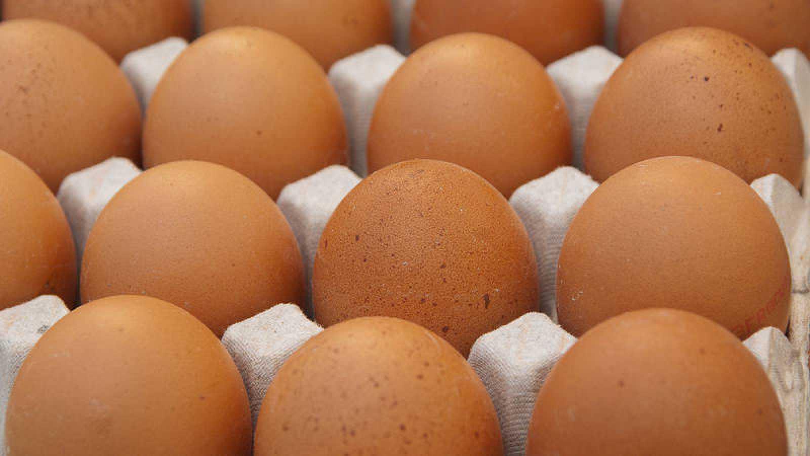 Vista de un cartón de huevos. Imagen de archivo.
